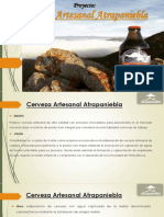 ProyectoATRAPANIEBLA.pptx