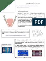 Tema I. Examen Del Paciente, Alteración de Las Relaciones Intermaxilares. Diagnóstico, Pronóstico y Plan de Tratamiento