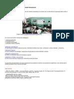 El Aula Virtual y Sus Cuatro Dimensiones Pedagogicas