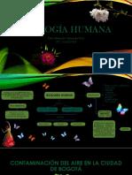 Ecología humana.pptx