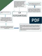 Presentación de biologia 2.pptx