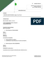 Resumo Direito Constitucional Aula 01 Principios Rafael Paiva