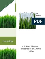 presentacionpastodetrigo-120628112422-phpapp01