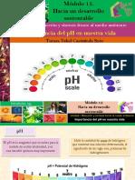 Importancia Del PH en Nuestra Vida/Módulo 15