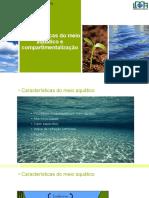 Cap 6 - Características Do Meio Aquático e Compartimentos e Suas Comunidades_2017.1
