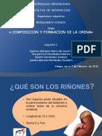 128157358 Formacion y Composicion de La Orina