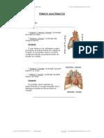 1 - Termos Anatomicos