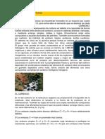 CARBONATOS MONOGRAFIA.docx