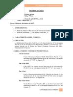 INFORME TECNICO -  MEMORIA DESCRIPTIVA.docx