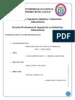 Practicas PRE PROFESIONALES