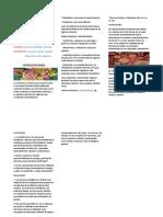 NUTRICION BACTERIANA.docx