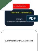 EL MINISTERIO DEL AMBIENTE.pdf