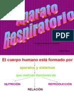 4 Tema2 Elaparatorespiratorio 130116122826 Phpapp01