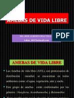 Amebas de Vida Libre.patologia, Laboratorio Incidencias