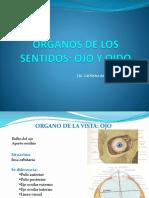 Órganos de Los Sentidos Ojo y Oído Lic. Barreda
