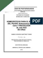 HOMEOPÁTICOS PARA EL MANEJO DEL PICUDO Anthonomus eugenii Cano Y PROTECCIÓN AL CULTIVO DE CHILE