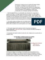 Historia de Ataudes y Sarcofagos