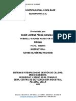 Diagnostico Ambienta y Linea Base (1)YL