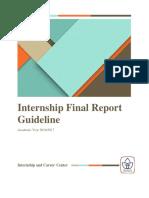 Internship Final Report 2016-2017