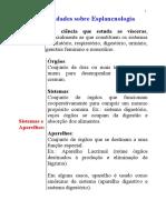 1.1   Generalidades sobre esplancnologia.doc