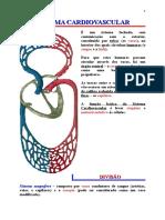 2   Sistema Circulatório.doc