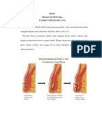 LP Abses Perianal