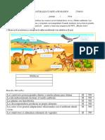 Prueba de Ciencias Naturales Cuarto Año Básico Ecosistemas