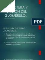 7.Estructura y Función Del Glomérulo