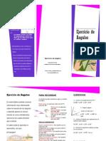 Tripitico Ejercicios de Angulos