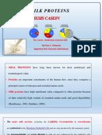 Presentation3casein Faisal 170418180916