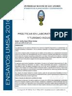 Ensayo_15 Prácticas y Turismo Industríal.pdf