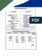 AMBIENTE MACROECONOMICO-2.pdf