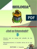 ENTOMOLOGIA.pptx
