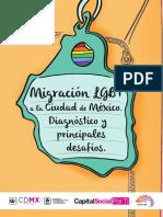 Migración LGBT a la Ciudad de México_FundaciónArcoíris