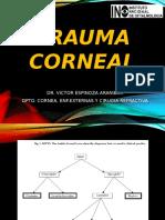 Trauma Corneal Final Usm