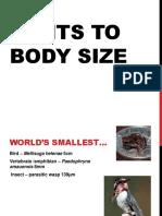 Large Organism Adaptations