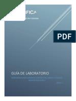 2019 Guia Fisio Morfo II