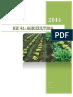 Nic 41 Monografia 2014 UNCP