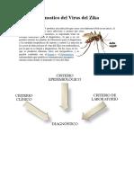 Diagnostico del Virus del Zika Ximena Illescas.docx