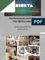Catedra Abierta_Fabrica Celular