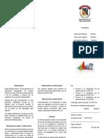 presupuesto folleto