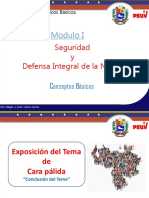 Seguridad y Defensa Integral