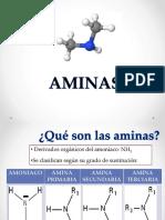 10. AMINAS