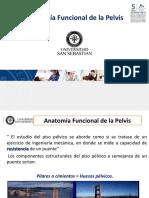 Clase 7- Fx Piso Pelvico
