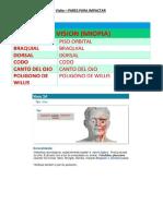 Visão 2.2.pdf