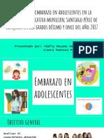 Proyecto Embarazo en Adol. Sustentación 2017