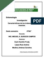 CARACTERISTICA DE LOS ORDENES DE LOS INSECTOS UNIDAD 2.docx