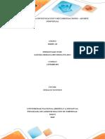 Resultado de La Investigación y Recomendaciones - Bibiana Becerra