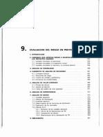 9. Evaluación Del Riesgo en Proyectos Mineros