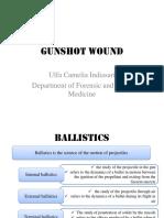 GUnShot Wound